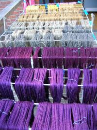 Purple_neutrals